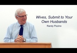Wives, Submit to Your Own Husbands – Randy Pizzino