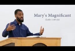 Mary's Magnificant (Luke 1:46-55) – Tawfiq Cotman-El