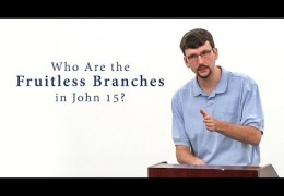 Who Are the Fruitless Branches in John 15? – James Jennings