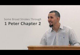 Some Broad Strokes Through 1 Peter Chapter 2 – David Berard