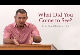 What Did You Come to See? – David Berard